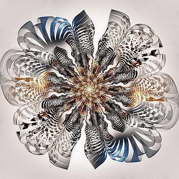 Anastasiya Malakhova - Zebra Flower