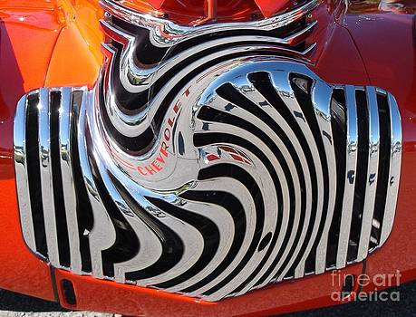 Zebra Grille by Anthony Morris