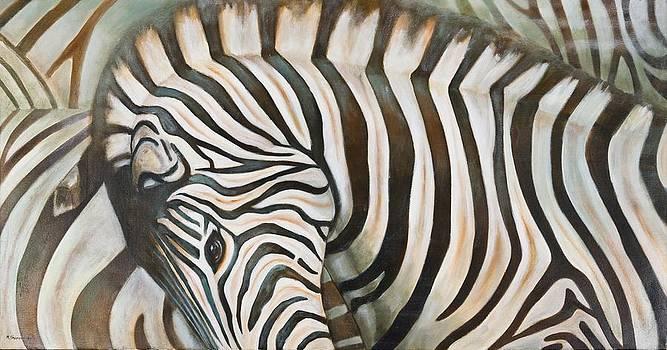 Zebra  by Michal Shimoni
