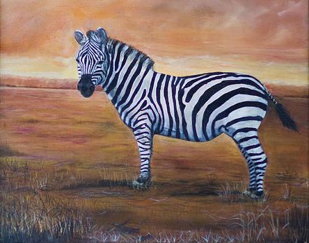 Zebra on Watch by Virginia Butler