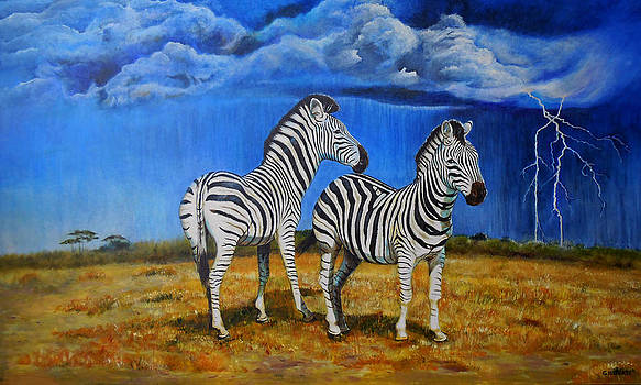Michael Durst - Zebra Storm