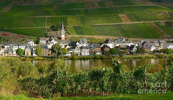 Zell-Merl on the Moselle by Gisela Scheffbuch