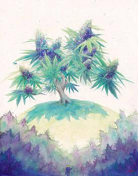 Zen Cannabis by Raymond L Warfield jr