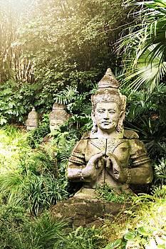 Zen by Emily Fidler