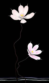 Zen Flower twins with a black background by GuoJun Pan