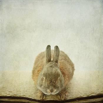 Zen Rabbit  by Sonya Kanelstrand