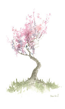 Zen Tree In Spring by Sean Seal