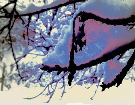 Zima1 by Brajan Salamon