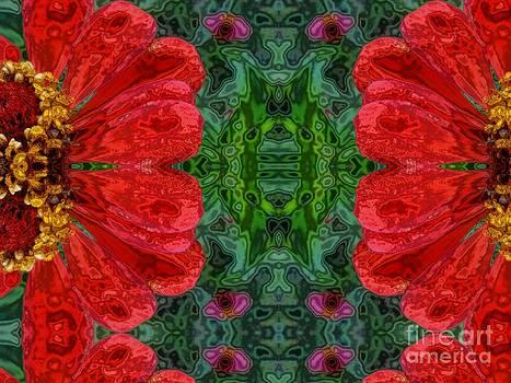 Zinnia red and a half by Dana Hermanova