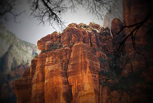 Zion National Park by Jens Larsen