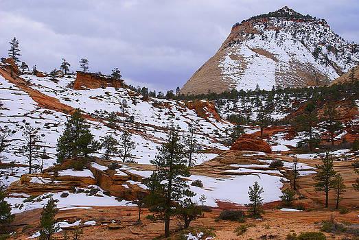 Zion Landscape by Broderick Delaney