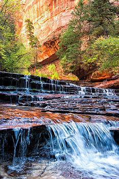 Zion Subway Angel Falls by Kayta Kobayashi