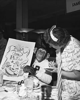 Dick Hanley - Zippy The Chimp