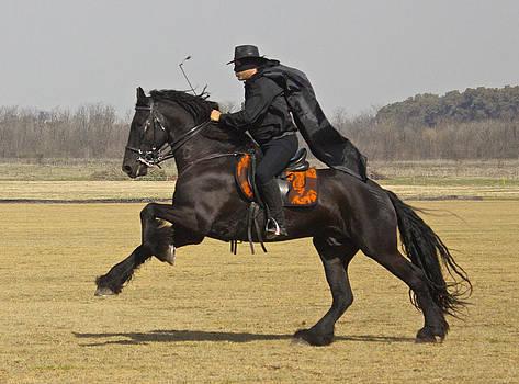 Venetia Featherstone-Witty - Zorro In Pursuit