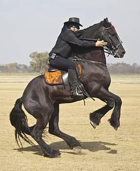 Venetia Featherstone-Witty - Zorro Rides Again