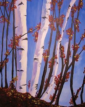 Birch by Anne Marie Spears