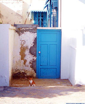 Blue Door Cat by Anthony Novembre