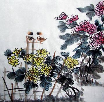Chrysanthemum by Jason Zhang