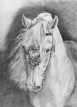' Druida' by Sue  Miles