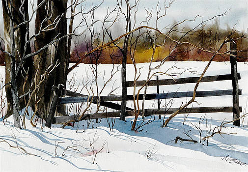 Fenced In Frost by Art Scholz