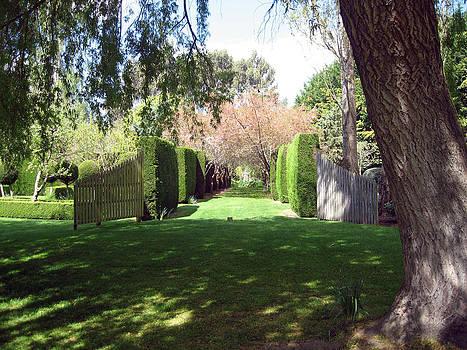 Rachael Shaw -  Millstream Gardens 14