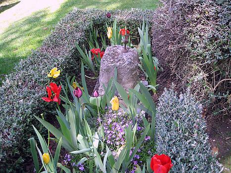 Rachael Shaw -  Millstream Gardens 16