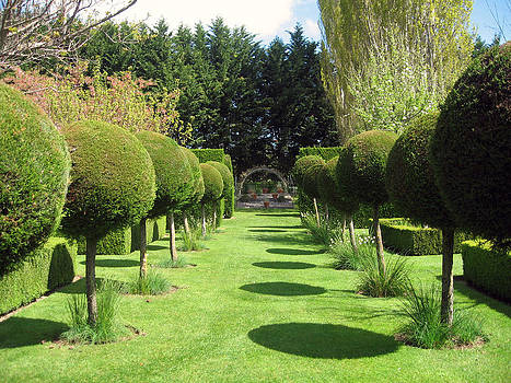 Rachael Shaw -  Millstream Gardens 23