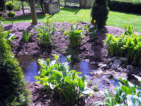 Rachael Shaw -  Millstream Gardens 24
