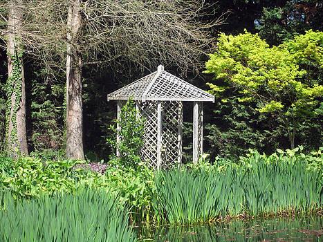 Rachael Shaw -  Millstream Gardens 25