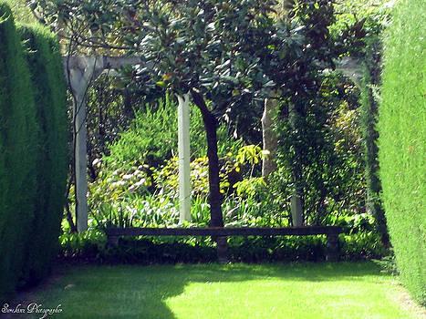 Rachael Shaw -  Millstream Gardens 27