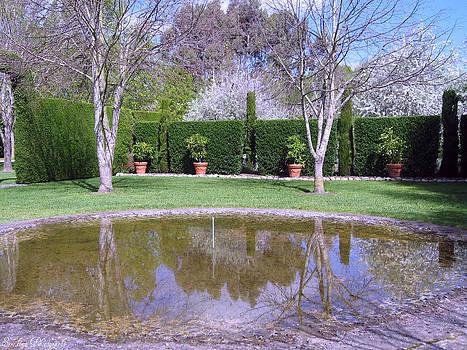 Rachael Shaw -  Millstream Gardens 30