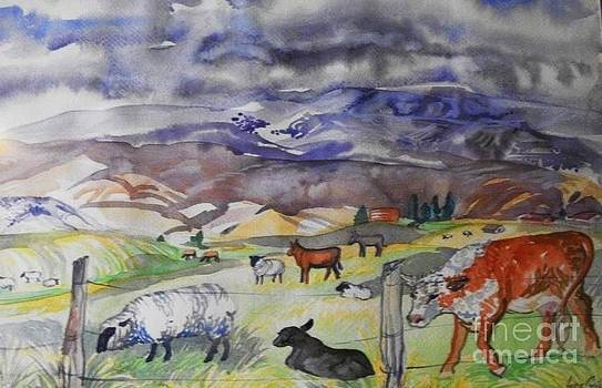 Mixed Farm Animals graze in Field by Annie Gibbons