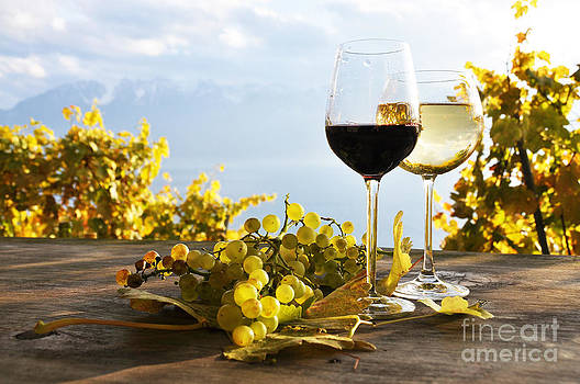 Pair of wineglasses and bunch of grapes by Alexander Chaikin