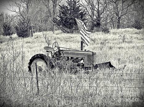 Patriotic John Deere by Stephany Knight