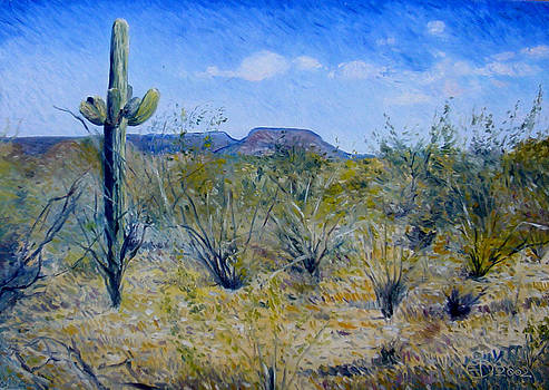 Saguaro Cactus Anthem Arizona USA 2002 by Enver Larney
