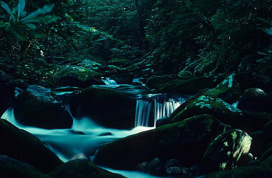 Smoky Mountain Creek by Dick Todd
