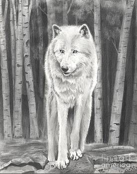 Christian Conner - Arctic Wolf