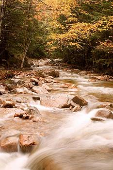 Autumn Color and River by Amanda Kiplinger