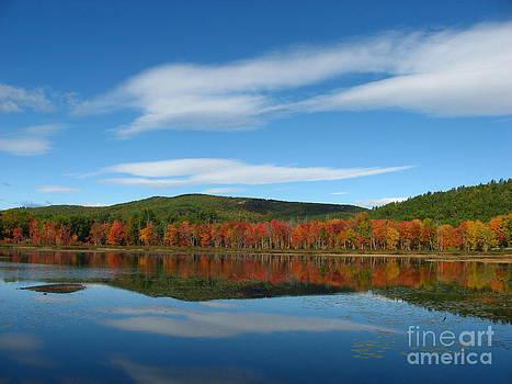 Christine Stack - Autumn Reflection