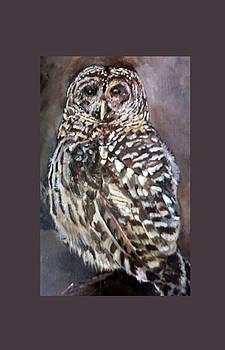 Amalia Jonas - Barred Owl