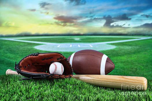 Sandra Cunningham - Baseball  bat  and mitt in field at sunset