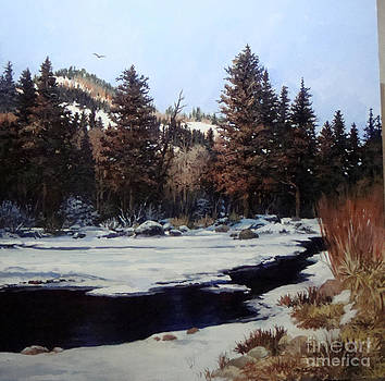 Beaver Creek by W  Scott Fenton