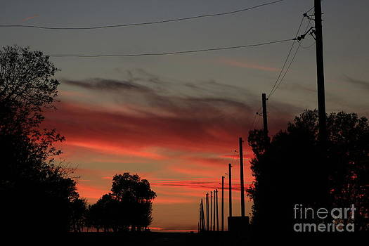 Blazing Red Country Road Sunset by Robert D  Brozek