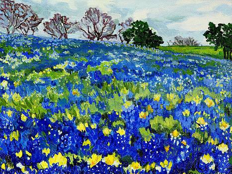Bluebonnets by Debbie Beukema