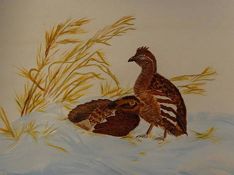 Nancy Fillip - Bobwhite Quails