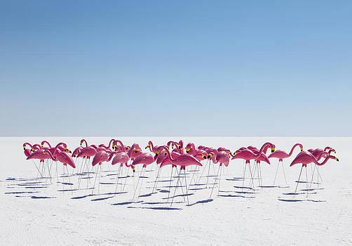 Bonneville Salt Flats Usa by Paul Edmondson