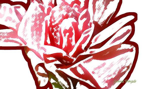 James Temple - Breathless