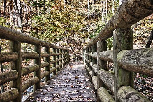 James Woody - Bridge Near Cascade Falls