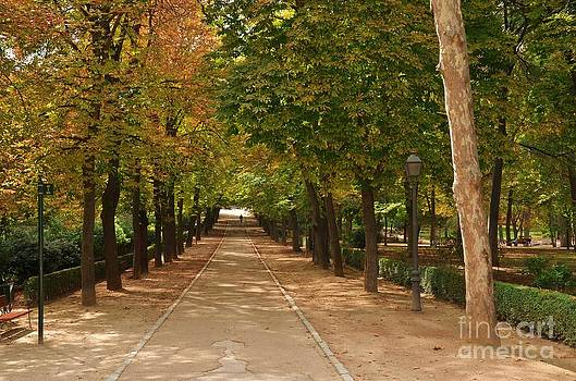 Buen Retiro Park. Madrid by Kevin Gallagher