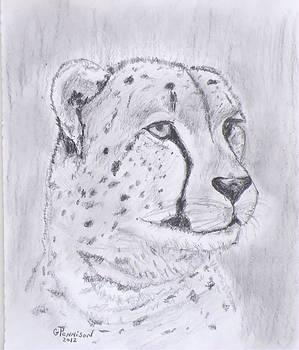 Cheeta Watching by Gilbert Pennison
